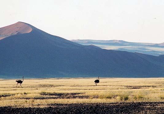http://www.beautiful-nature.net/travels/0001-n.jpg