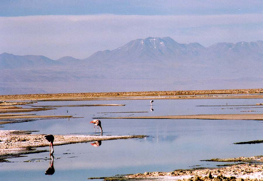 http://www.beautiful-nature.net/travels/0403-n.jpg