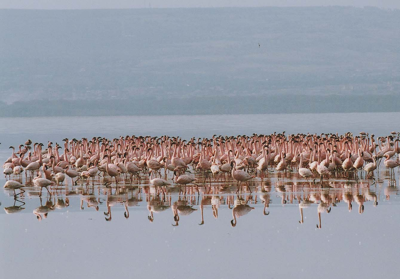 http://www.beautiful-nature.net/travels/0525-1.jpg